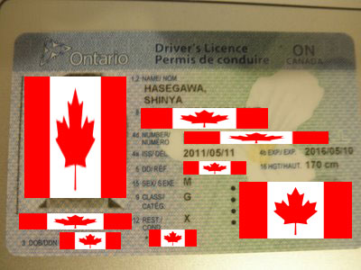 Ontario_Drivers_Licence.jpg