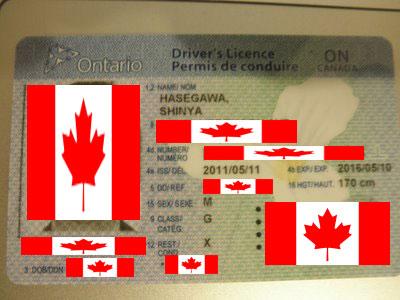 Ontario_Drivers_Licence.jpg